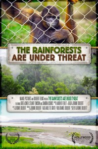 The Rainforests are under threat Affiche